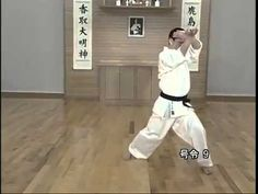 Shotokan Karate Kata, Kyokushin Karate, Aikido, Judo, Martial Arts, Youtube, Sport, Deporte, Sports