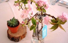 Succulent and Cherry Blossom centerpiece by Gardenia Organic