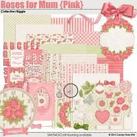 Roses For Mum (Pink) Collection Biggie