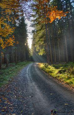 Rycerzowa - zobacz jak wygląda jesienią - places2visit.pl