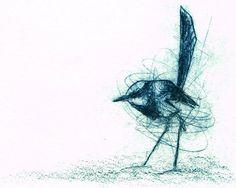 Superb Fairy Wren, Hand Pulled Original Etching, Australian Native BIrd