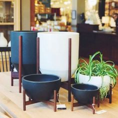 family of modernica case study planters spotted these stoneware planters come in