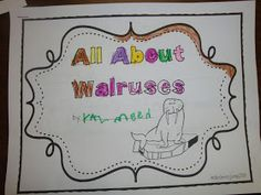 Learning Adventures: Research on Walruses