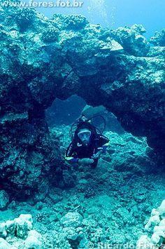 Big Island, Hawaii scuba diving #scubadivingvacations