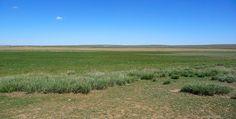 Gurvan-Saikhan-Nationalpark Grass, Lost, Horses, Mountains, Nature, Travel, Mongolia, Buddhism, Round Trip