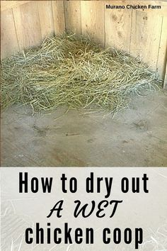 How to dry out a wet or flooded chicken coop in just a few steps. Barns or backyard chicken coops often get wet and need to be dried out before the coop bedding can be replaced. Here's how to properly dry out the floor. Homesteading.