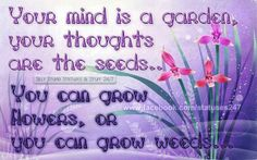Garden of thoughts Choose Wisely, Garden Signs, Sign I, Love Words, Positive Affirmations, Mindfulness, Bullet Journal, Positivity, Thoughts