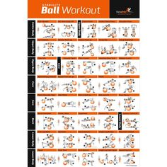 """Amazon.com : Exercise Ball Poster Laminated - Total Body Workout - Personal Trainer Fitness Program - Swiss, Yoga, Balance & Stability Ball Home Gym Poster - Tone Your Core, Abs, Legs Gluts & Upper Body - 20""""x30"""" : Sports & Outdoors"""