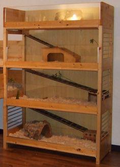 Meerschweinchen Eigenbau Plexiglas oder Kaninchendraht (Rabbit Houses)