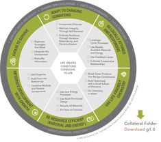 Life's Principles :: Biomimicry 3.8