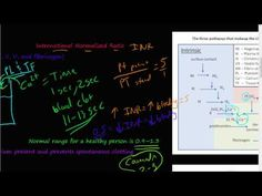 #52 - prothrombin time (PT), partial thromboplastin time (PPT), International normalized ratio (INR) - YouTube