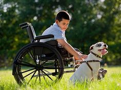 Guide dogs for the deaf and blind have been around for decades, but today service dogs can help people with everything from epilepsy to diabetes to depression. These incredible pooches are truly man's best friend.