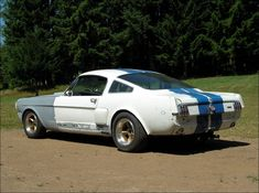 Mustang Fastback, Shelby Gt500, Vintage Race Car, Vintage Auto, Chevy Camaro, Chevrolet Corvette, Ford Svt, Mustang Girl, Vintage Mustang