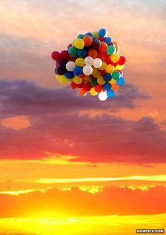 The colors in the photo are beautiful and they accent what is happening. The sunset in the background creates horizontal lines across the image and makes it very visually appealing. Plus the balloons in the sky give great contrast.