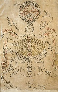 File:Skeleton system., Avicenna, Canon of Medicine Wellcome L0013314.jpg