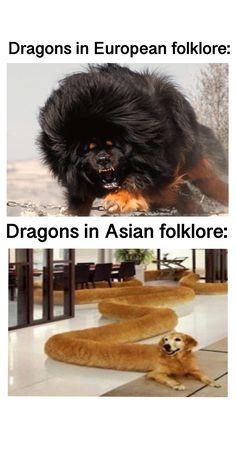 Really Funny Memes, Stupid Funny Memes, Funny Relatable Memes, Haha Funny, Funny Cute, Hilarious, Funny Animal Jokes, Cute Funny Animals, Animal Memes