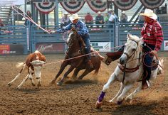 Team Roping ... one day i will do this!