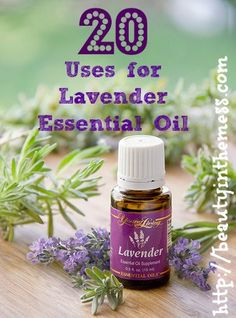 20 Uses for Lavender Essential Oil - www.facebook.com/yleotks or www.youngliving.org/tsalava to order. #1633853