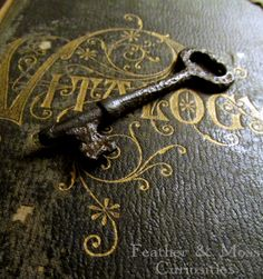 """""""The key to wisdom is knowing all the right..."""
