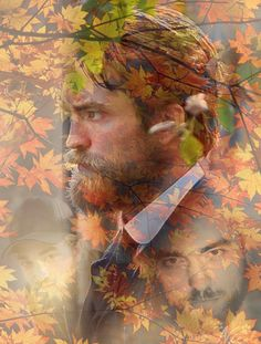 Autumn 2015 ~ wallpaper byNicole2dogs