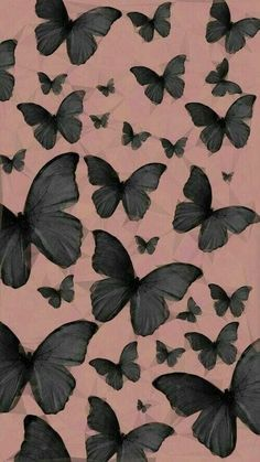 Wallpaper Backgrounds Aesthetic Black Butterflies Jcm These Black Wallpaper On Your Pho - Wallpaper Quotes Butterfly Wallpaper Iphone, Iphone Background Wallpaper, Black Wallpaper, Aesthetic Iphone Wallpaper, Cartoon Wallpaper, Cool Wallpaper, Mobile Wallpaper, Background Images, Aesthetic Wallpapers