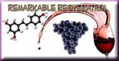 "Resveratrol is a ""polyphenol"" found in the skin of dark grapes that is produced naturally when the plant is under attack by pathogens such as bacteria or fungi. What is a ""polyphenol""? If you look at the attached photo, the two hexagons in the structure of the molecules are called ""aromatic rings"" and the OH ..."