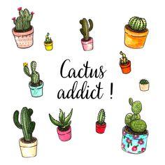 Pochette Surprise Catus 29,90€ | 39,90€ Une box cactus pleine de piquants !