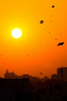 Sunset of a Thousand Kites by Morten Falch Sortland, India.  ΚΑΘ ❤    So beautiful :')