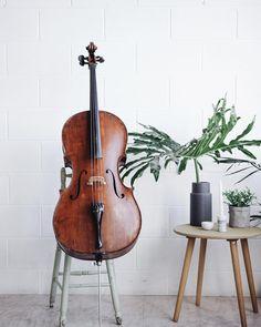 """Gefällt 67 Mal, 2 Kommentare - Sage Fuller (@sage.cello) auf Instagram: """"He's pretty good looking . . . #cello #bae #inlove #photoshoot #websitedesign #circa1926…"""""""