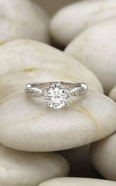 This beautiful nature-inspired setting in white gold features delicate strands of scalloped pavé diamonds twisting together.