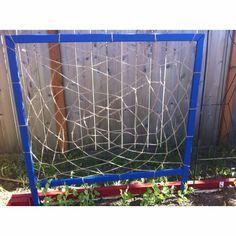 Dreamcatcher pea trellis - All About Garden Arch Trellis, Pea Trellis, Making Dream Catchers, Spring Is Coming, Urban Farming, Sustainable Living, Permaculture, Outdoor Gardens, Garden Design