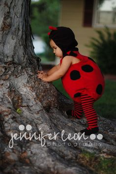 This is too cute! Lady bug on a tree... hahaha
