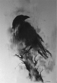 Charcoal Drawing Design Original Raven Drawing Charcoal Black and White Art Halloween Gothic Crow on a Branch - Crow Art, Raven Art, Vogel Illustration, Digital Illustration, Corvo Tattoo, Art Halloween, Halloween Noir, Art Blanc, Charcoal Art