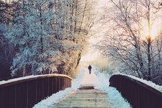 Germany, Man Bridge Lonely Sun Walk Wintry Winter L Winter Running, Winter Walk, To Go, Let It Snow, Best Photographers, Winter Scenes, Vacation Destinations, Free Pictures, Free Stock Photos