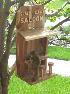 Saloon Bird...scratch that Squirrel Feeder - by RossC23 ...