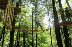 Ramblewild, a forest adventure park in the Berkshires, is now open to the public. At Ramblewild, you can zipline and kayak between the trees. Forest Adventure, Adventure Travel, Oh The Places You'll Go, Places To Visit, Ropes Course, Boston Things To Do, Fantasy Forest, New Forest, Day Trips
