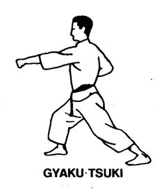 Karate-reverse punch