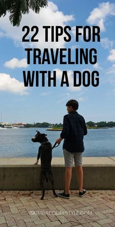 The ultimate travel guide with dogs: 22 tips for traveling with a dog from travel experts who have traveled across the USA and Europe with a dog. Via @skimbaco