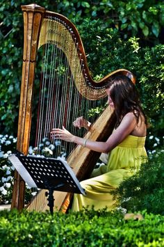 A harpist for the wedding ceremony music.