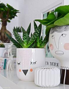 Ideas To Help You Start Organic Gardening Indoor Garden, Garden Pots, Indoor Plants, Outdoor Gardens, Cacti And Succulents, Planting Succulents, Planting Flowers, Succulent Pots, Face Planters