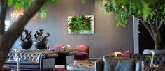 Compact Green Wall Product From Suite Plants Is Living Plant Artwork For Companies and Commercial Spaces Looking To Go Green Vertical Garden Plants, Live Picture, Interior Plants, Plant Art, Go Green, Live Plants, Houseplants, Indoor Plants, Wall