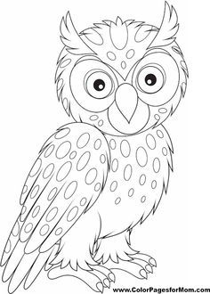 Baby Owl Coloring Pages  Bing Images  Preschool crafts