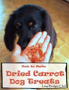 How to Make Dried Carrot Dog Chewy or Jerky Treats. Easy recipe!