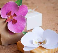 » [DIY] Orchidées en papier