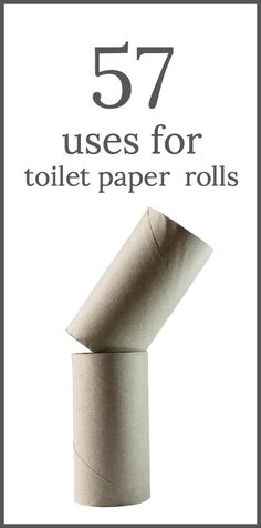 Don't throw away your toilet paper rolls! Here is 57 uses for toilet paper rolls including crafts, gifts and household re-purposing to reduce, reuse and recycle Toilet Paper Roll Art, Rolled Paper Art, Toilet Paper Roll Crafts, Toilet Paper Tubes, Tissue Roll Crafts, Diy Projects To Try, Craft Projects, Fun Crafts, Crafts For Kids