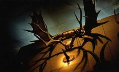 The Museum of Jurassic Technology: Los Angeles' weirdest museum.