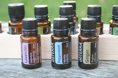 Nausea Cocktail 5ml roller bottle; 20 drops Ginger, 10 drops Peppermint, 10 drops Lavender (omit for non drowsy) top off with FCO