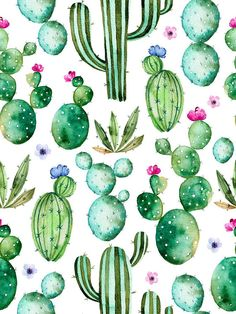 Vintage Pastel Watercolor Cactus birthday Photography