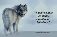 Wolf. I may have been reincarnated from a wolf...