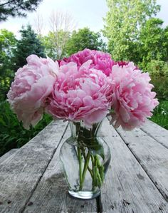 There is no flower more beautiful or fragrant than a peony in my books. They go it alone in a simple glass vase. Perfect.